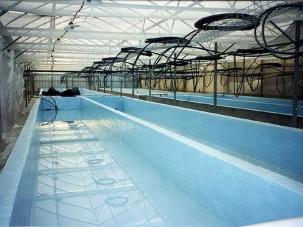 Хидроизолационни системи за басейни