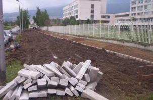 Проектиране и изграждане на градина