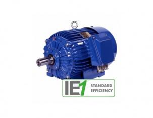 Електрически двигатели за енергетиката IE 1