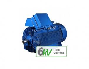 Електрически двигатели за енергетиката 6 kV