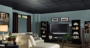 Акустични черни пана за растерен таван POLO