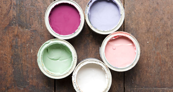 6 полезни факта за боите, които е добре да знаете