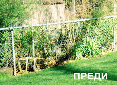 За двора и градината Fence_before%281%29
