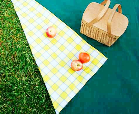 Походная скатерть из плотной ткани станет незаменимым помощником на любом пикнике
