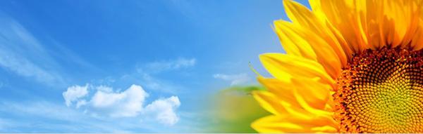 Семинар на тема 'Енергийна ефективност и нови решения за отопление и климатизация'