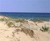 Без хотели върху дюни на 2 км от брега