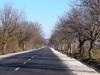 Ремонтират селски пътища и училища в Монтанско