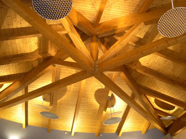 Огнезащитна система за дървени конструкции и дървесни плоскости РV33