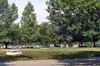 Ремонтират алеите и Езерото с лилиите в Борисовата градина