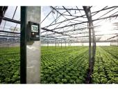 Дата логер testo 174H - за измерване на температура и влага при съхранение на бързоразвалящи се продукти