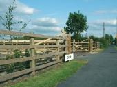 Импрегнирана дървена ограда
